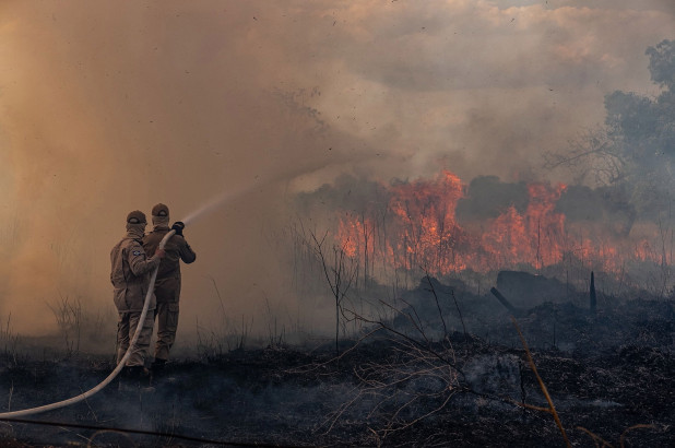 Amazon Wildfires: What Happens Now?