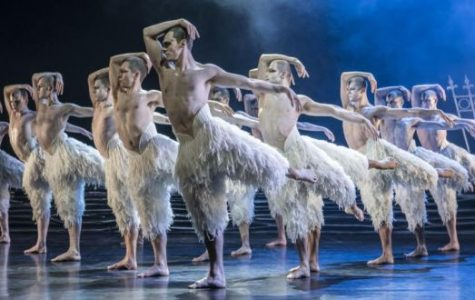 Matthew Bourne's Swan Lake Review