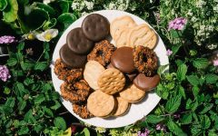 What is the Best Girl Scout Cookie?